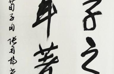 张用博—书画篆刻文献展